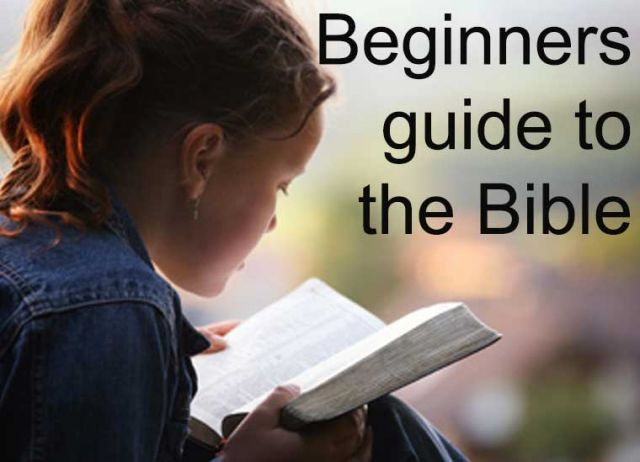 Beginners Guide to the Bible